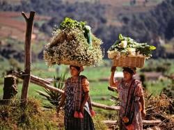 Гватемала -  Достопримечательности