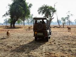 Замбия -  Природа
