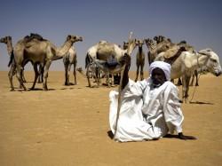 Кувейт - бедуин