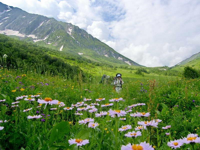 Порнокино альпийские луга