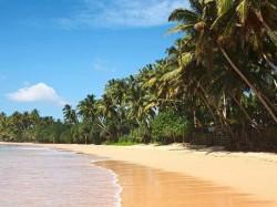 1. Шри-Ланка - побережье
