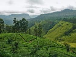 2. Шри-Ланка - ландшафт