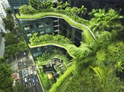 2. Сингапур - необычные здания