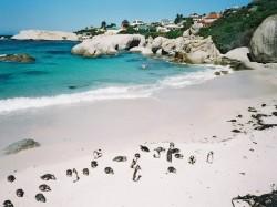 1. ЮАР - Кейптаунская Ривьера