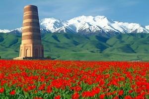 <p><b>В Кыргызстане вводят International Travel ID</b></p>